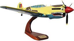 Painted P-40 Curtiss Warhawk